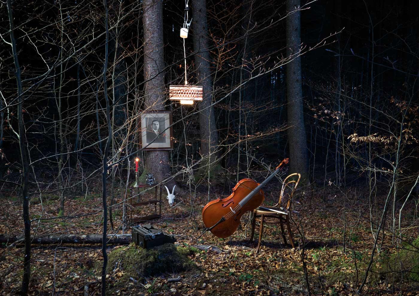 Cello Wald